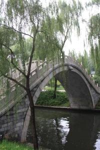Puente parque de bambu