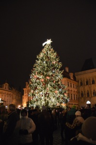 Arbol de navidad, en la plaza vieja