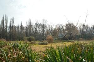 Parque botánico en invierno