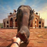 Para inspirarse: Cuentas de instagram de viajeros