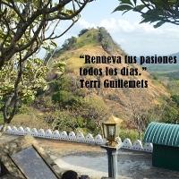 """""""Renueva tus pasiones todos los días."""" Terri Guillemets"""