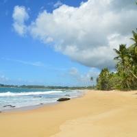 Rumbo a Sri Lanka: Praga Negombo