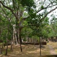 Sri Lanka: Anuradhapura