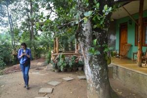 Nuestro bungalow