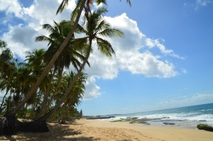 Playas desiertas y paradisiacas